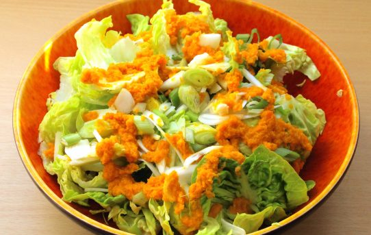 japanese carrot-ginger salad